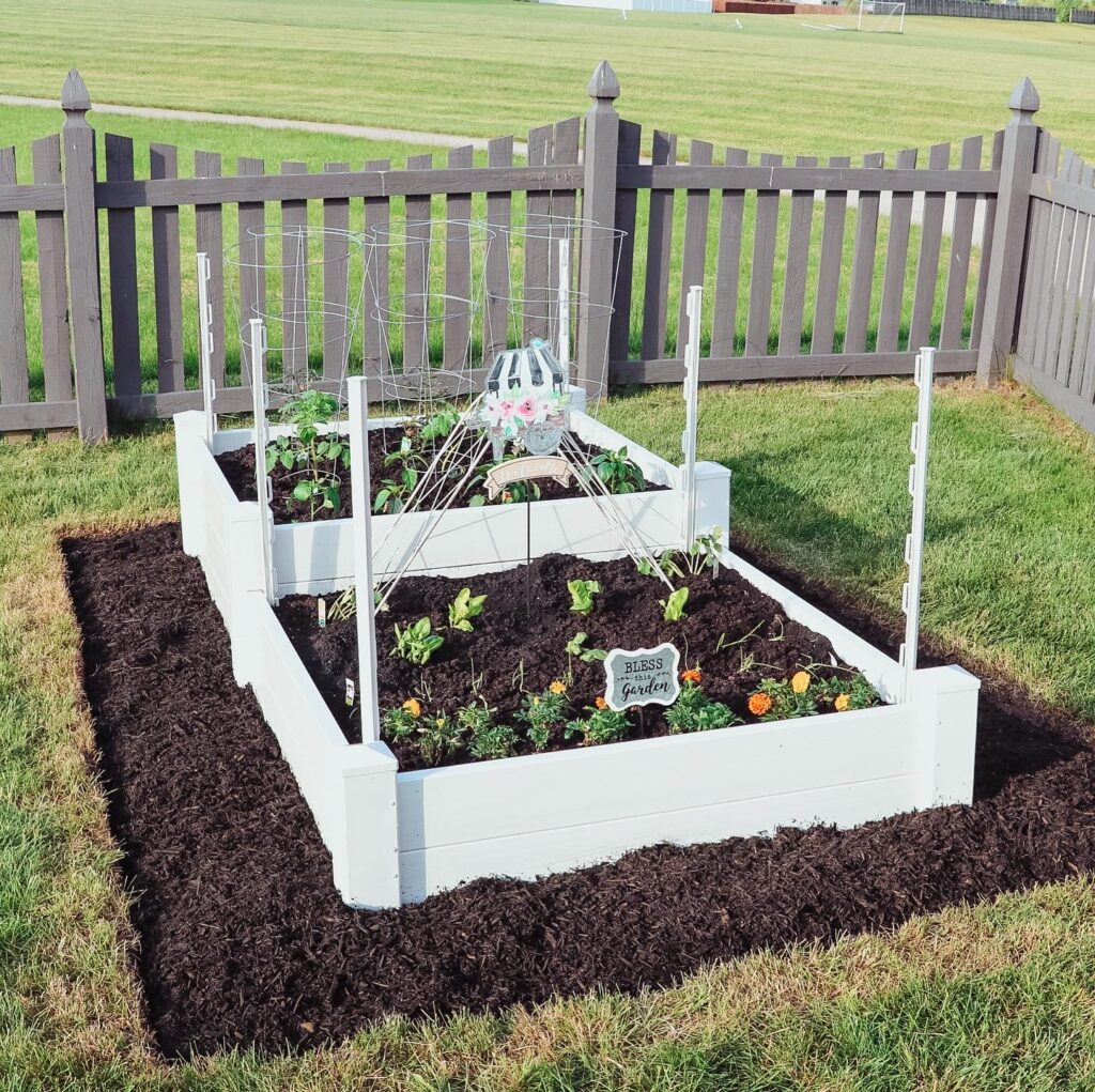 10 Tips To Starting A Beautiful Raised Bed Vegetable Garden